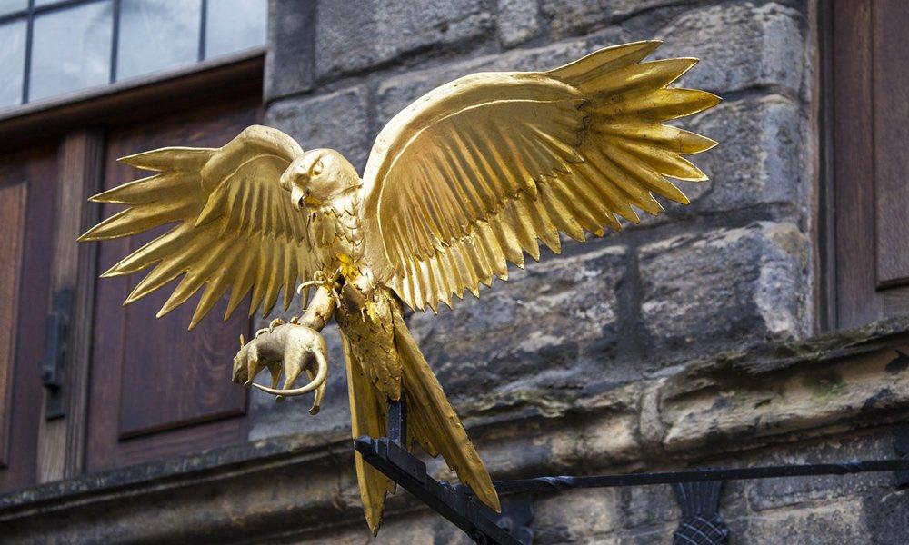 Golden eagle at Gladstone's land